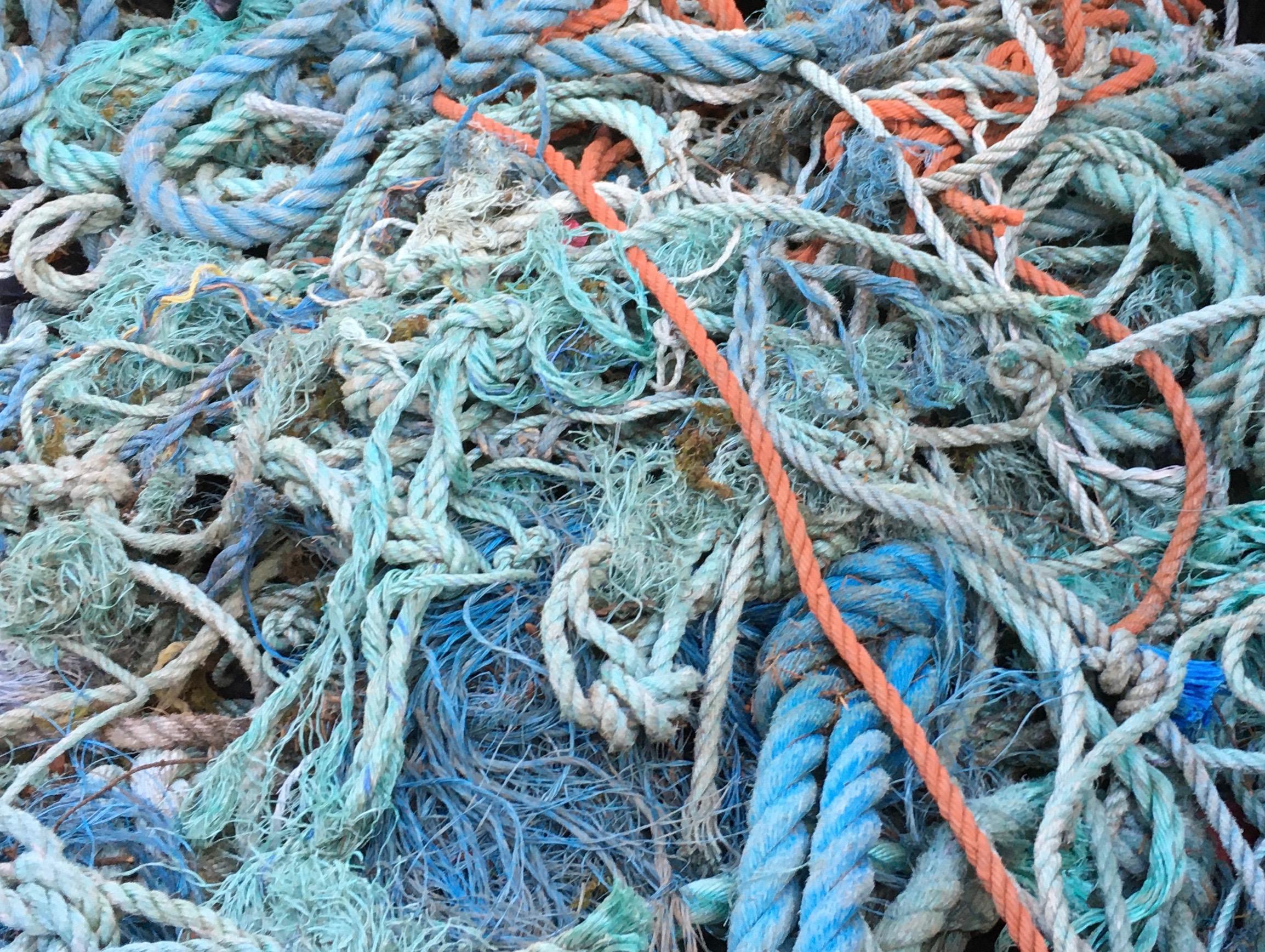 Beach rope found on Hornby Island beaches